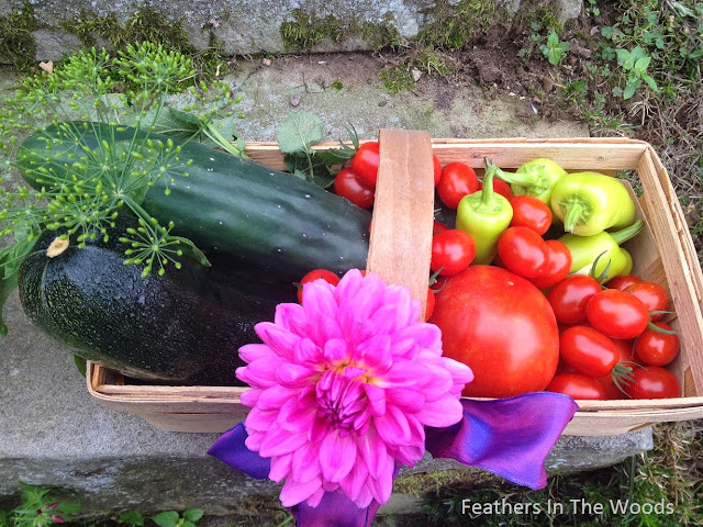 Growing your own food, health benefits of gardening