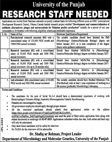 Advertisement for Punjab University Jobs June 2019
