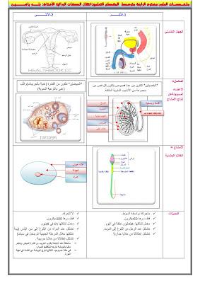 ملخص مادة العلوم الطبيعية الرابعة متوسط