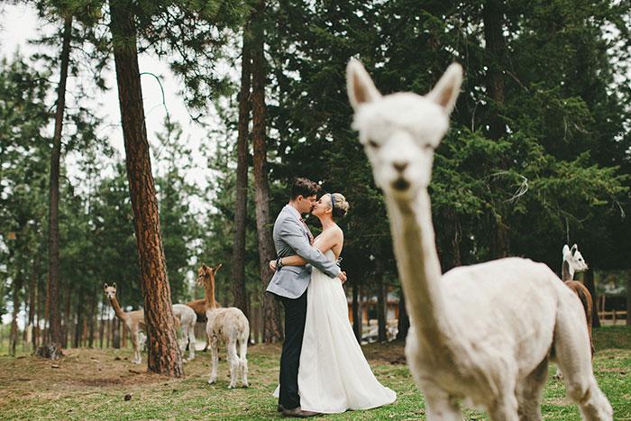 Kumpulan Foto Wedding yang Bikin Ngakak