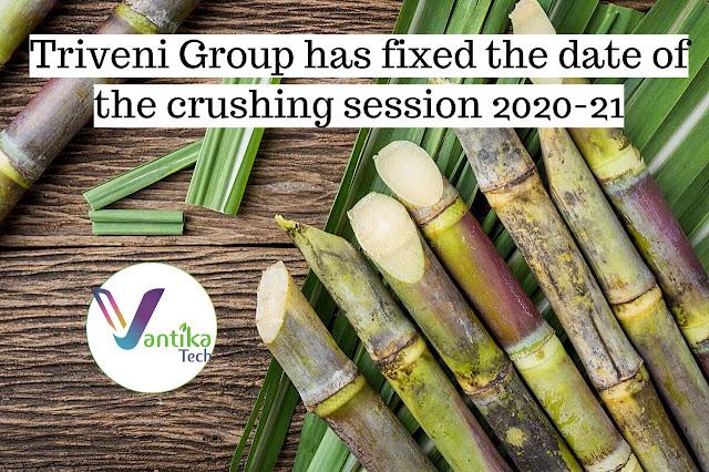 Triveni Sugar Mill/Sugarcane News