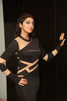 Pranitha Subhash in a skin tight backless brown gown at 64th Jio Filmfare Awards South ~  Exclusive 143.JPG