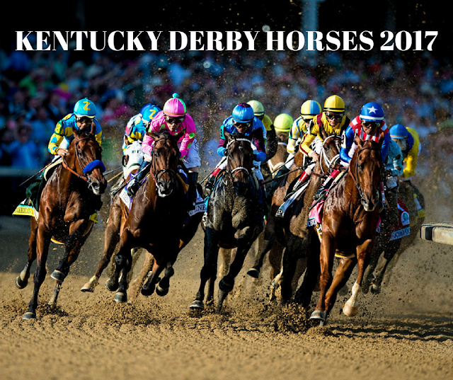kentucky derby horses 2017