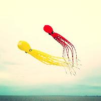 czerfs volant géants pieuvre famille charente maritime festival