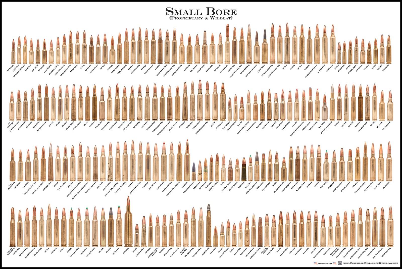 Small Bore Cartridge Comparison Guide Poster