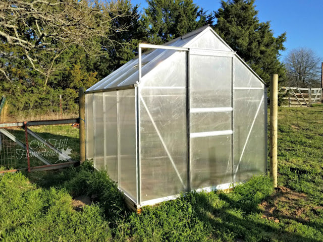 We bought a small greenhouse kit to extend our growing season. Here's my review of the assembly process.