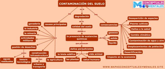 Mapa conceptual de la contaminación del suelo, concepto causas y efectos