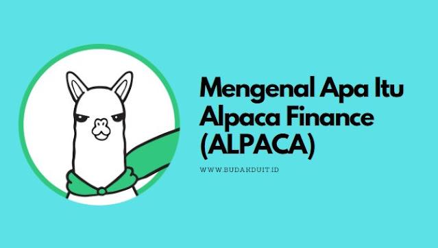 Gambar Logo Alpaca Finance (ALPACA)