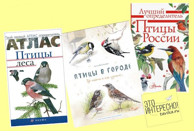 список книг о птицах для детей