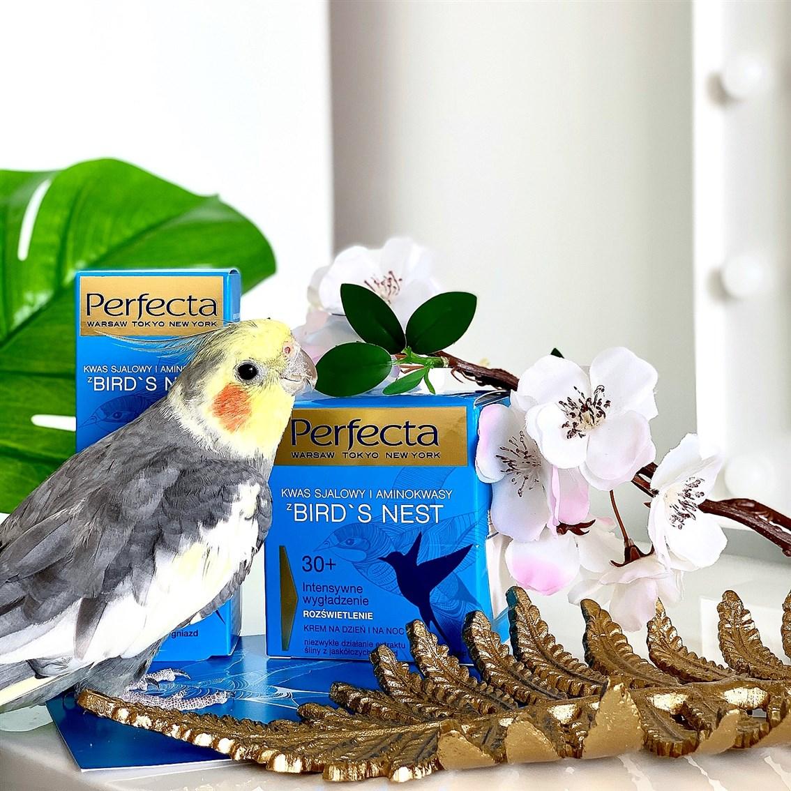 Perfecta Bird's Nest kosmetyki ze śliny z jaskólczych gniazd