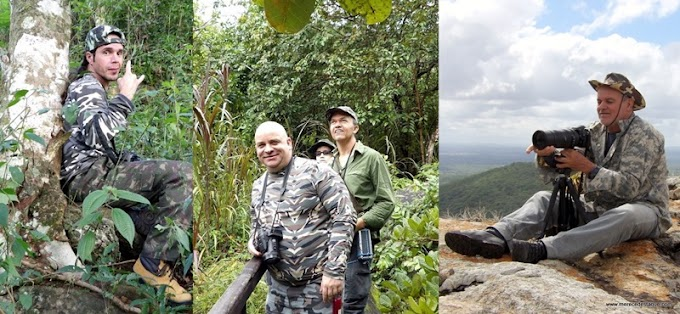 A arte de observar e fotografar pássaros revela espécies raras em Santa Cruz do Capibaribe e região