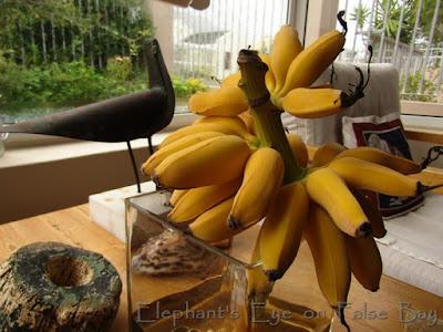 Ripe bananas June 2018