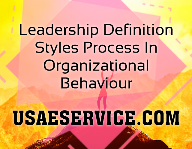 Leadership Definition Styles In Organizational Behaviour