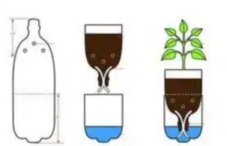 Metode hidroponik sederhana