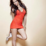Sanjana hot  wallpapers showing her hot thighs