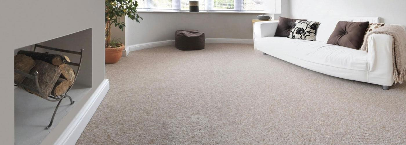 Steamy Carpet Cleaner of Coventry - Carpet Cleaner Professionals
