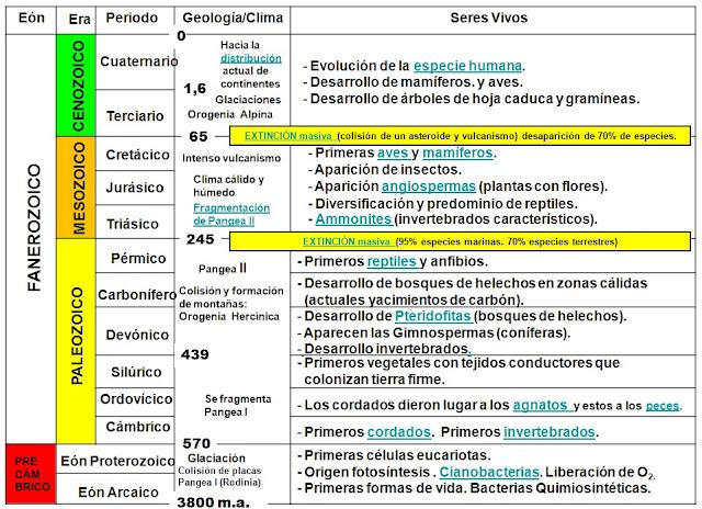 Javier Marco Castellot: TEMAS 1º BACHILLERATO BIOLOGÍA Y GEOLOGÍA