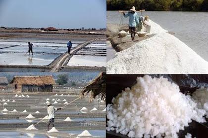 Kampanye Garam Yodium Telah Mematikan Usaha Garam Laut
