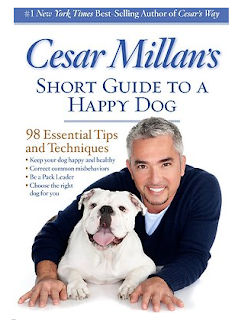 short guide to happy dog