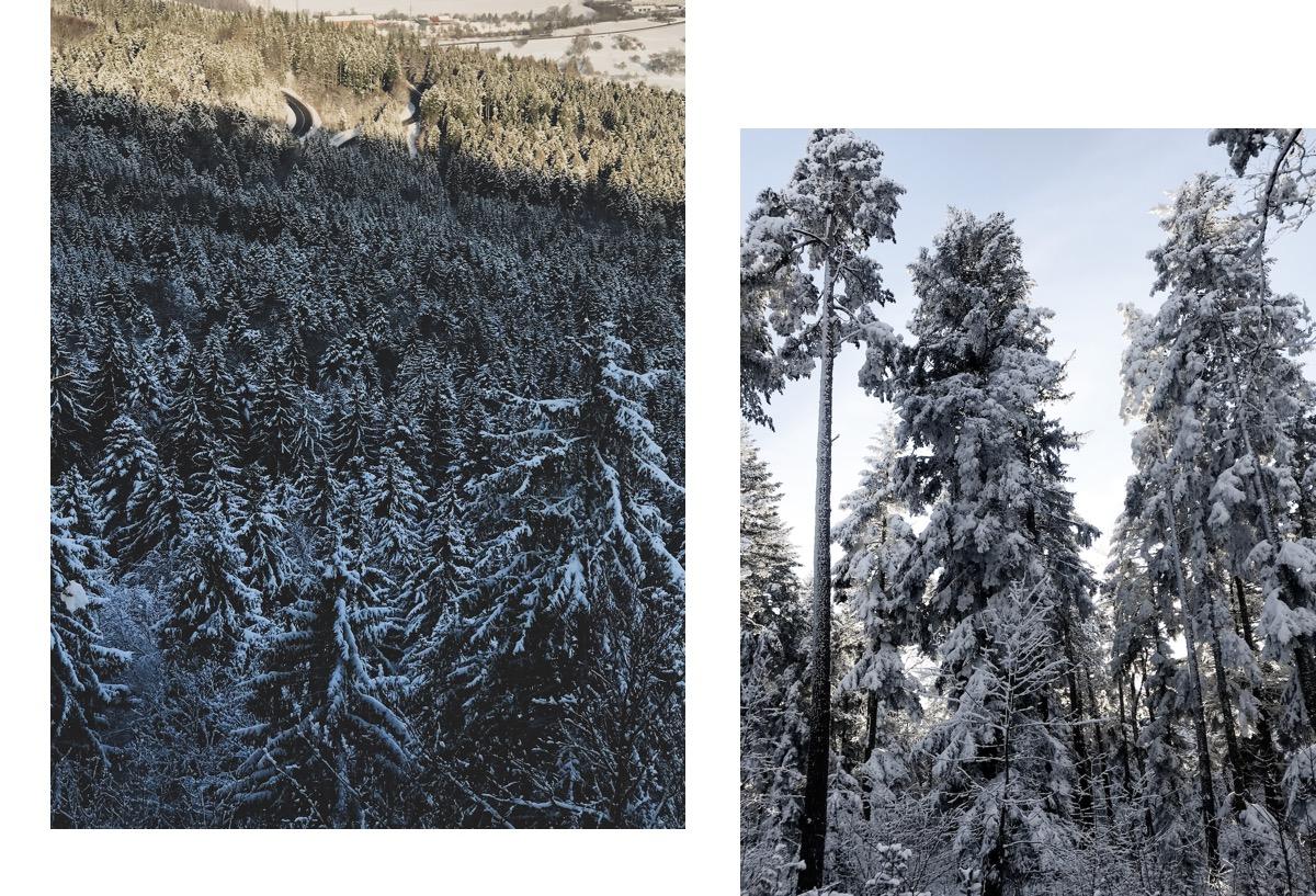 Winterwanderungen Nordschwarzwald schwäbische Alb Wandern in Baden-Württemberg Balingen Lochenpass Lochenstein Panorama Tieringen Hausen am Tann