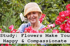 https://foreverhealthy.blogspot.com/2012/04/flowers-not-pills-flowers-make-you.html#more