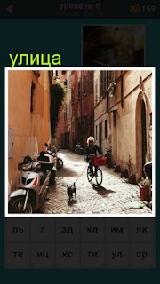 по узкой улице едет женщина на велосипеде и рядом на поводке собачка бежит