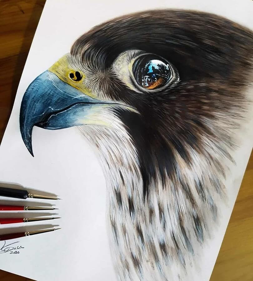 03-Peregrine-Falcon-Kyle-Duca-Animal-Paintings-www-designstack-co