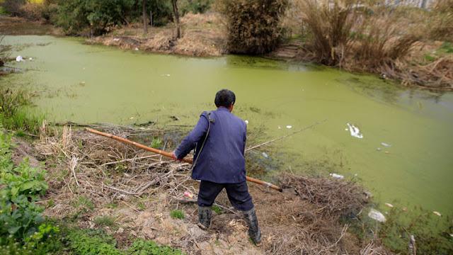 Un agricultor chino estudió Derecho durante 16 años para demandar a una empresa por contaminación