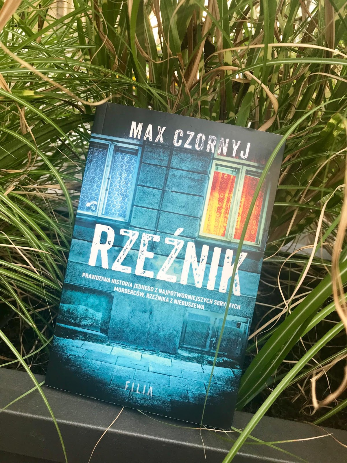 Max Czornyj - Rzeźnik