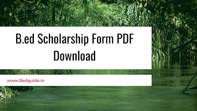 B.ED Scholarship Form PDF Download