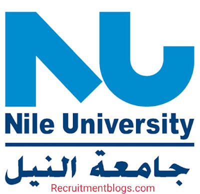 Accounting internship At Nile University