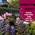 Φθινοπωρινοί βολβοί φύτευσης - Φωτογραφίες από τις περσινές επιτυχίες μας