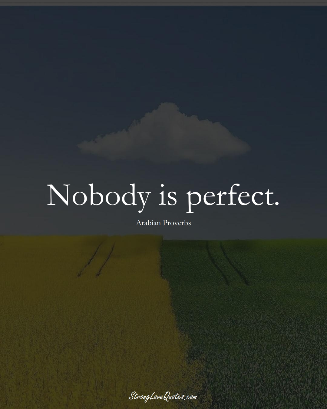 Nobody is perfect. (Arabian Sayings);  #aVarietyofCulturesSayings