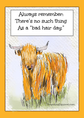 "Funny highland cow ""no Bad Hair Day"" cartoon..."