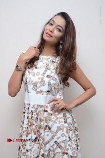 Telugu Actress Reshmi Thakur in Long Dress at Plus One ( 1) Audio Launch  0033.jpg