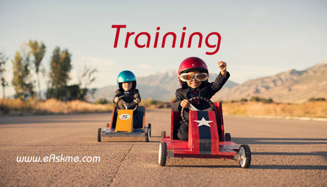 What Type of Training do you need?: What are the Best Training Products for an Online Business?:  eAskme