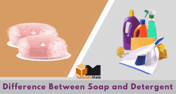 Difference Between Soap and Detergent - www.tutorialsmate.com