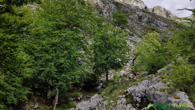Poza en el Río Redemuña