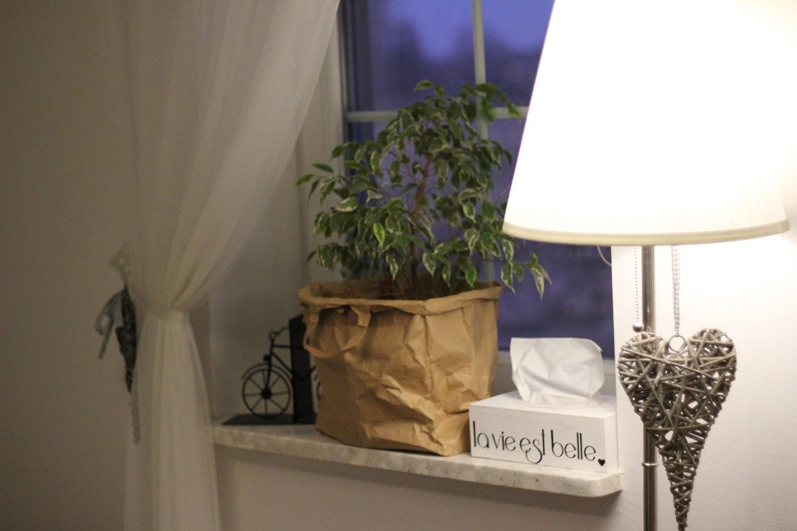 Papierowe Torby Jako Osłonki Na Kwiatki Piaskowy Dom