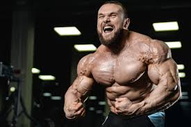 Diet Plan Muscle Building High Protein Indian No Fancy Non Veg