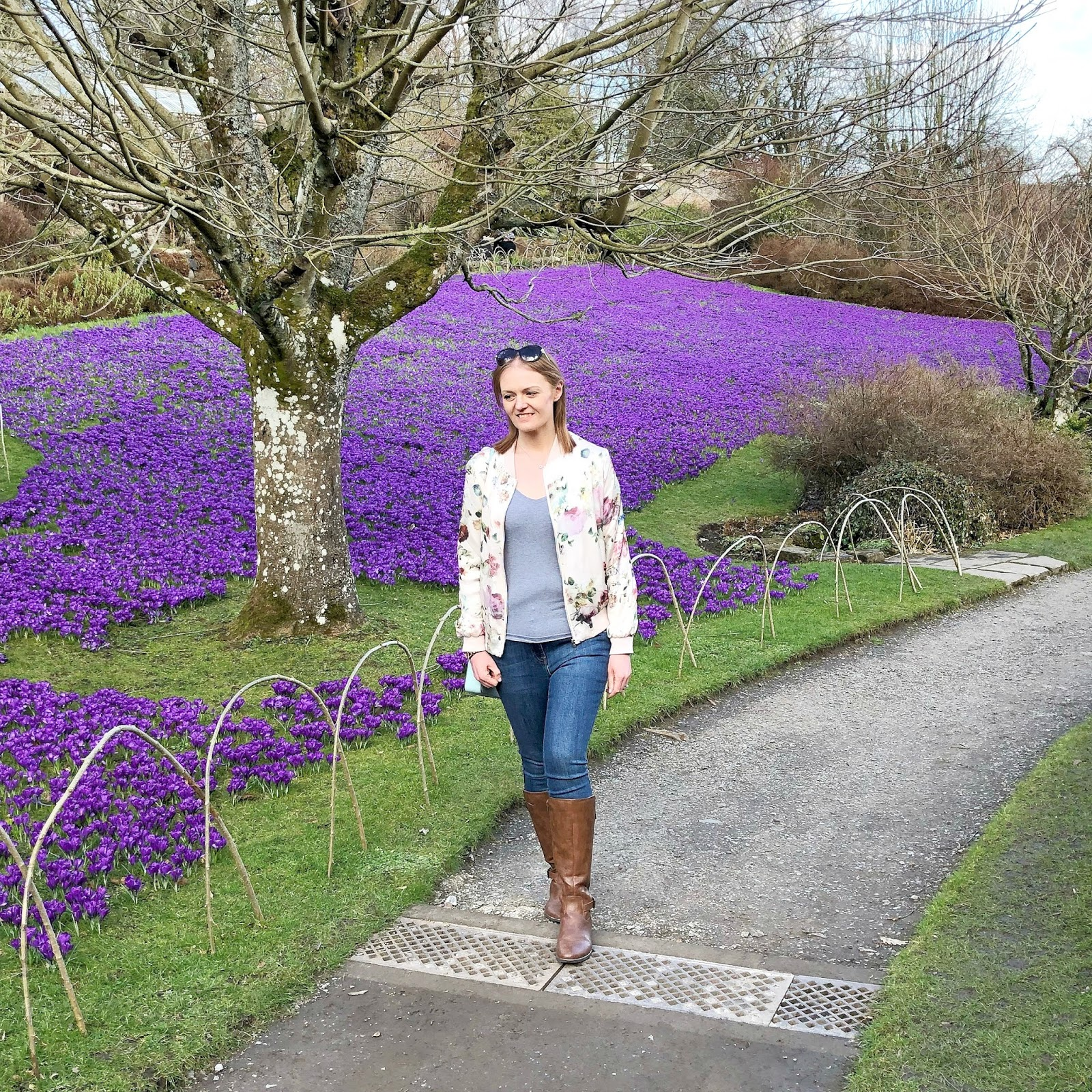 New Girl in Toon - Wallington Crocus Lawn