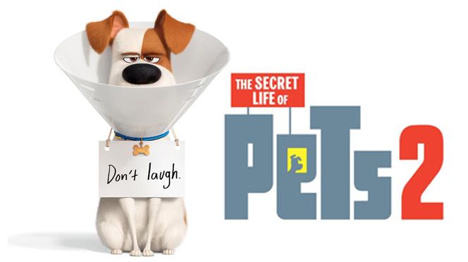 La Vida Secreta de tus Mascotas 2 (2019) Web-DL 720p Latino-Ingles