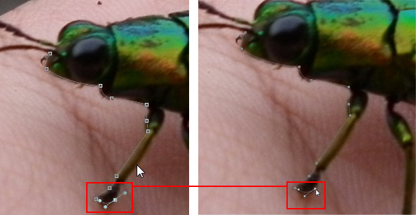 Tutorial Cara Edit Foto Background Hitam Putih Di Photoshop