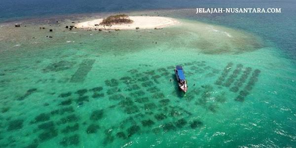 jelajah pulau wisata open trip ujung kulon