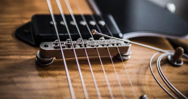 Senar D'addario Asli atau KW Peter de Vries Guitar