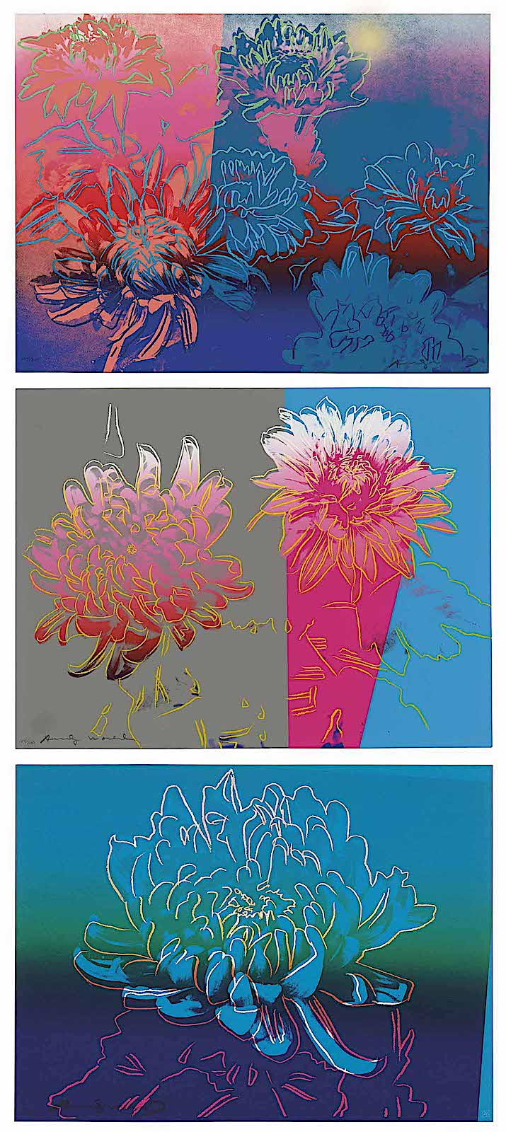 Andy Warhol flowers, a tripdich