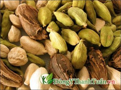 cách chữa đau dạ dày tại nhà bằng hạt bạch đậu khấu