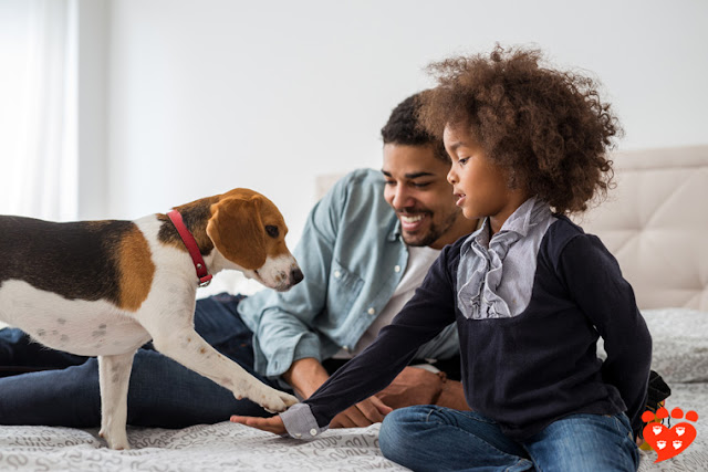 Positive reinforcement in dog training - used here by a girl and her father to train the family dog