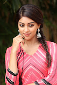 Anu Emmanuel beautiful photos-thumbnail-7