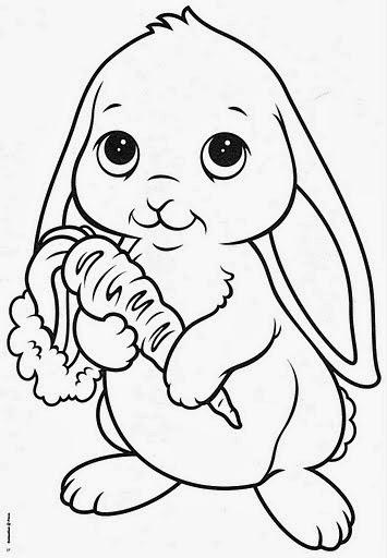 Dibujos Para Copiar De Animales Vinos En Casa